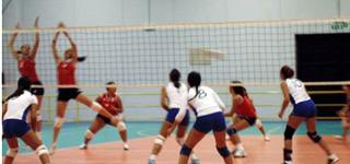 geatecno-new-volley