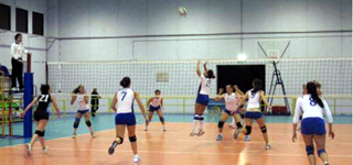 new-volley-vince